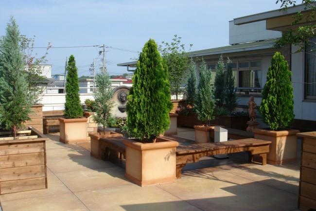 写真:イープランタ― 施工事例 屋上緑化 憩いの場として